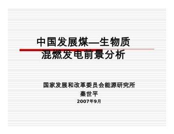 中国发展煤—生物质混燃发电前景分析 - 生态经济与可持续发展