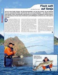 Fisch satt auf Senja - DinTur
