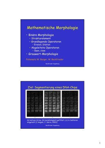 Mathematische Morphologie