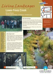 Living landscapes: Lower Frees Creek - Christchurch City Libraries