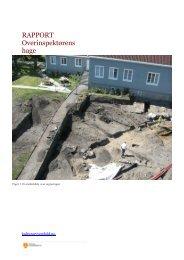 RAPPORT Overinspektørens hage - Kulturarv