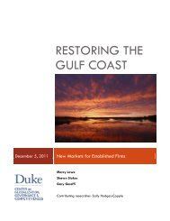 Restoring the Gulf Coast: New Markets for Established Firms