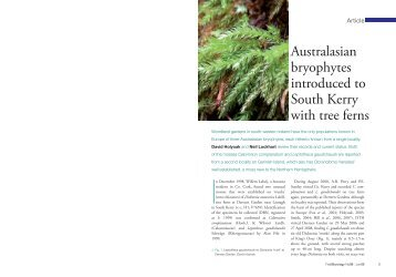 Australasian bryophytes introduced to South Kerry with tree ferns