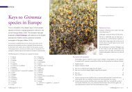 Keys to Grimmia species in Europe