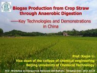 Biogas Production from Crop Straw through Anaerobic Digestion ...