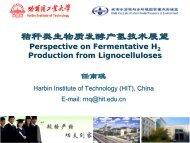 生物制氢技术的研究与发展