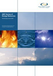 2007 Survey of Energy Resources - Hussonet - Free