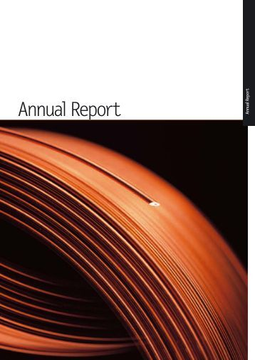 Annual Report - Investis