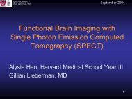 Functional Brain Imaging with Single Photon Emission Computed ...