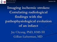 Imaging ischemic strokes: Correlating radiological findings with the ...