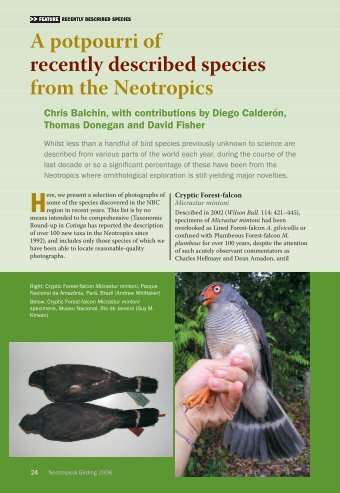 A potpourri of recently described species from the Neotropics