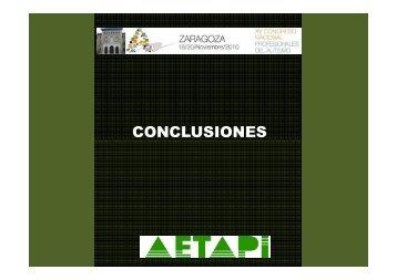 CONCLUSIONES CONGRESO ZARAGOZA 2010 - Aetapi
