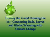 Connecting Buds, Leaves and Global Warming with ... - Harvard Forest