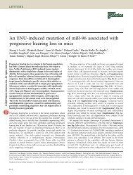 An ENU-induced mutation of miR-96 associated with progressive ...
