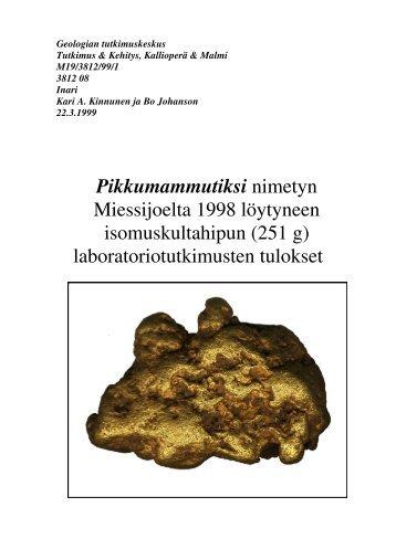 Raportti - arkisto.gsf.fi - Geologian tutkimuskeskus