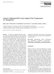 Analysis of Ribosomal RNA Genes Suggests That Trypanosomes ...
