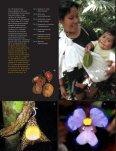Imágenes - Page 4