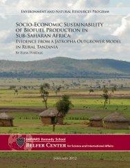 Socio-Economic Sustainability of Biofuel Production in Sub-Saharan ...