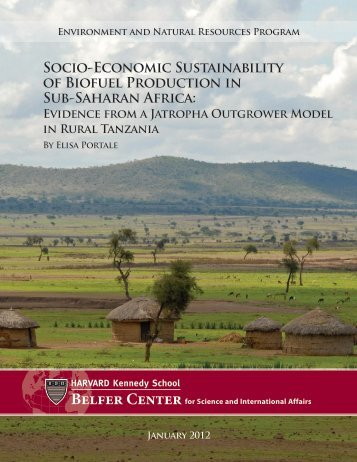 Socio-Economic Sustainability of Biofuel Production in Sub-Saharan ...