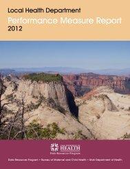 Local Health Department Performance Measure Report (2012)