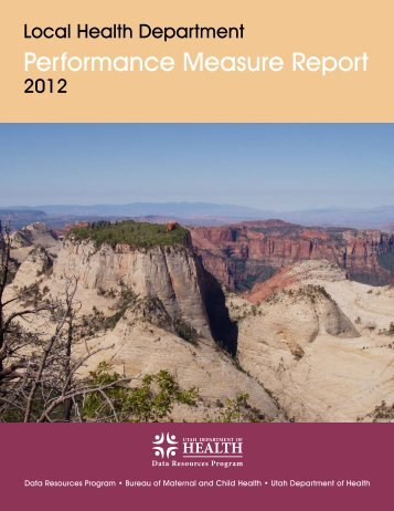 Local Health Department Performance Measure Report (2012)