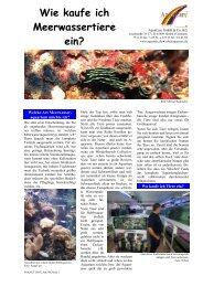 Wie kaufe ich Meerwassertiere ein? - Aquacare Gmbh & Co. KG