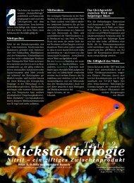 Stickstofftrilogie: Nitrit - Aquacare Gmbh & Co. KG