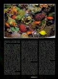 Stickstofftrilogie: Nitrit - Aquacare Gmbh & Co. KG - Seite 2