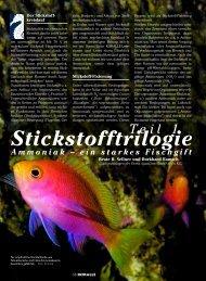 Ammoniak - ein starkes Fischgift - Aquacare Gmbh & Co. KG
