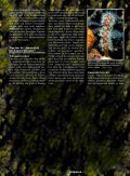 Ammoniak - ein starkes Fischgift - Aquacare Gmbh & Co. KG - Seite 4