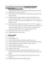 Soubor PDF