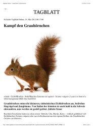 Tagblatt Online - Kampf den Grauhörnchen
