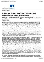 weiterlesen… (PDF) - RGBlick.com