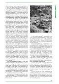 Cooperazioni mediterranee - Università degli Studi di Catania - Page 3