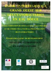 Les cyanobactéries - Ecobio