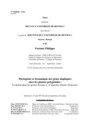 Phylogénie et dynamique des gènes - Ecobio - Université de ...