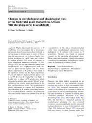 Changes in morphological and physiological traits of the ... - Ecobio