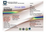 'Circuit QED': Quantum Electrodynamics of Superconducting Circuits ...