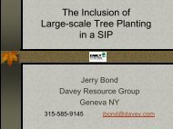 The Inclusion of Large-scale Tree Planting in a SIP - Houston ...