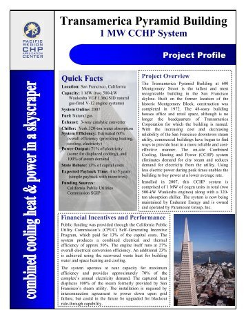 project profile template