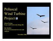 Peñascal Wind Turbine Project