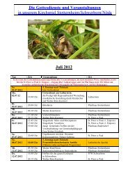 Monatsplan Juli 2012 als pdf - Kirchspiel Stotternheim