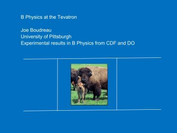 B Physics at the Tevatron - Physics Seminar