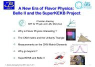 B - Physics Seminar - Desy