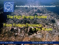 The High Energy Frontier : From Todays Discovery to the Future