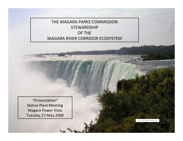 the niagara parks commission stewardship of the niagara river ...
