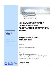 volume 1: public - niagara river water level and flow fluctuation study