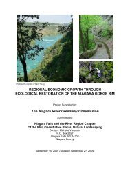 Regional Economic Growth Through Ecological - Niagara Power ...