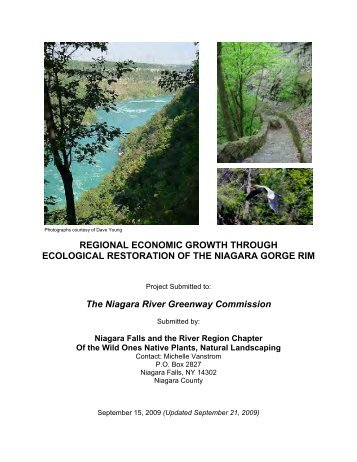 Regional Economic Growth Through Ecological - Niagara Power ...