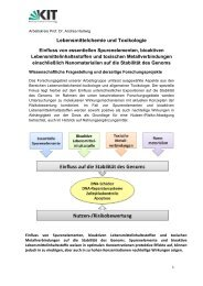 Forschungsgebiete - KIT - IAB/LMC